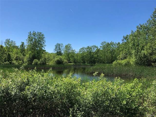 8438 W Somerset Road, Somerset, NY 14012 (MLS #B1344724) :: Lore Real Estate Services