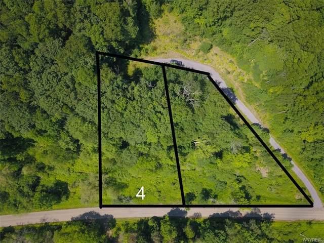 Lot 4 Hencoop Hollow Road, Mansfield, NY 14731 (MLS #B1347516) :: BridgeView Real Estate