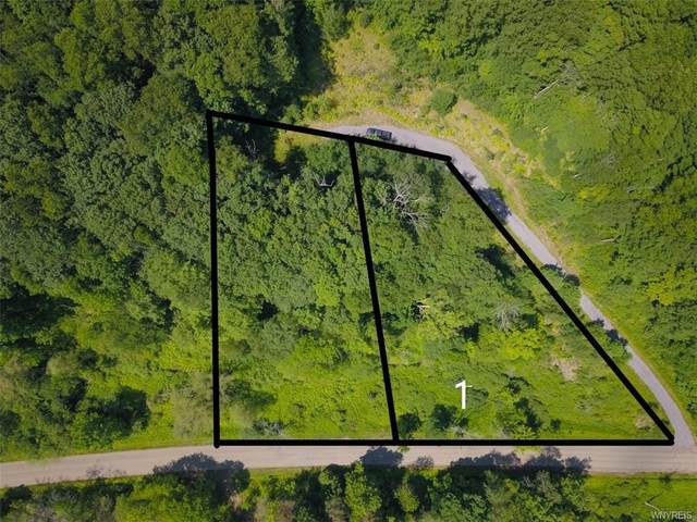 Lot 1 Hencoop Hollow Road, Mansfield, NY 14731 (MLS #B1347520) :: BridgeView Real Estate