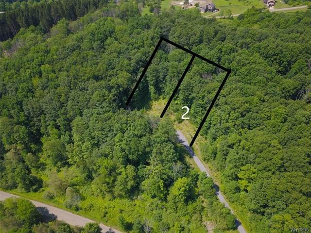 Lot 2 Hencoop Hollow Road, Mansfield, NY 14731 (MLS #B1347523) :: BridgeView Real Estate
