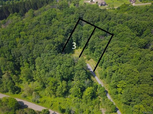 Lot 3 Hencoop Hollow Road, Mansfield, NY 14731 (MLS #B1347524) :: BridgeView Real Estate