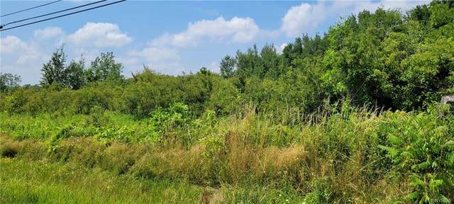 00 W Becker Road, Collins, NY 14034 (MLS #B1350025) :: 716 Realty Group