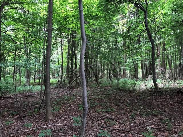 V/L Hunters Creek, Wales, NY 14169 (MLS #B1351181) :: Serota Real Estate LLC