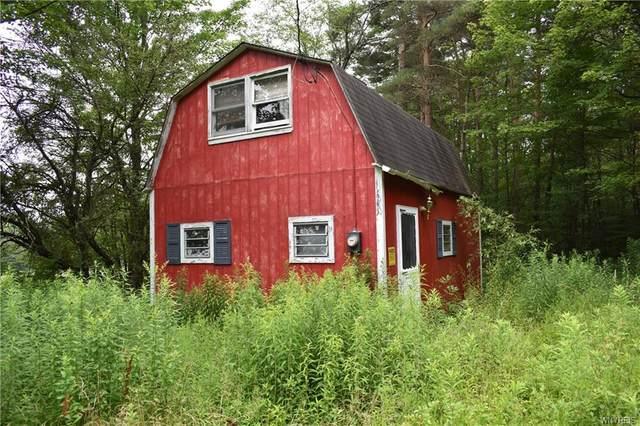 6277 Canyon Drive, Leon, NY 14719 (MLS #B1352395) :: TLC Real Estate LLC