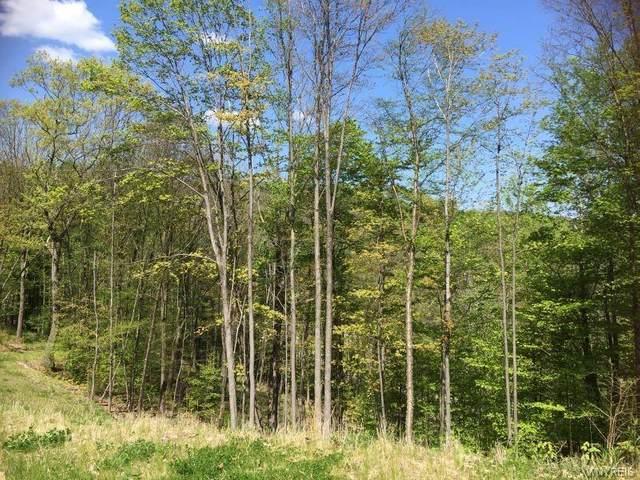 Lot 20 Westmont Ridge, Mansfield, NY 14731 (MLS #B1352684) :: BridgeView Real Estate