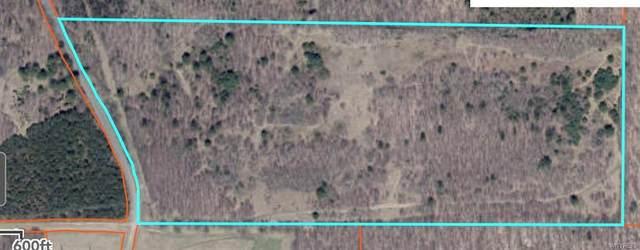 0 Alma Hill Road Tract, Alma, NY 14708 (MLS #B1354908) :: Robert PiazzaPalotto Sold Team