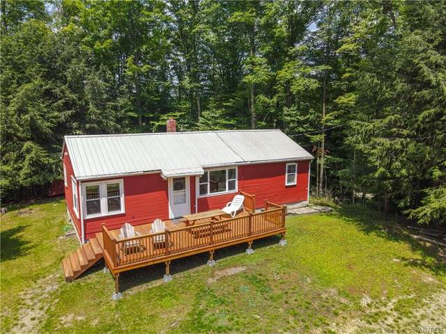 9595 Monk Hill Road, East Otto, NY 14729 (MLS #B1355044) :: BridgeView Real Estate