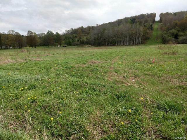 0 Nys Route 242 Highway, Franklinville, NY 14731 (MLS #B1355514) :: MyTown Realty