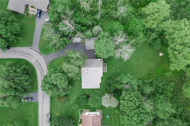 11 Esther Drive, Elma, NY 14052 (MLS #B1355938) :: Lore Real Estate Services