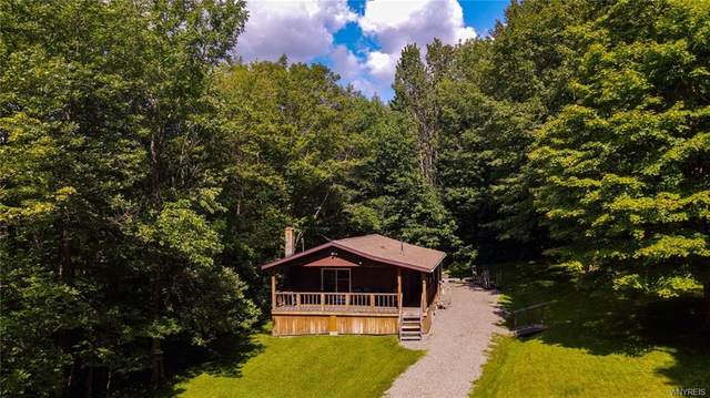 3847 Cash Hill Road, Machias, NY 14101 (MLS #B1356993) :: BridgeView Real Estate