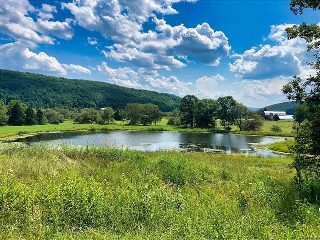 0 Creek Road, Hinsdale, NY 14727 (MLS #B1357264) :: TLC Real Estate LLC