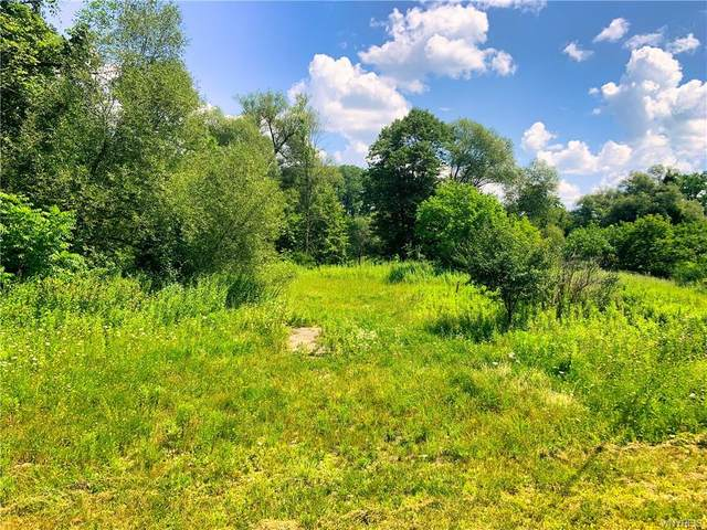 0 County Route 65, Hornellsville, NY 14843 (MLS #B1357265) :: BridgeView Real Estate