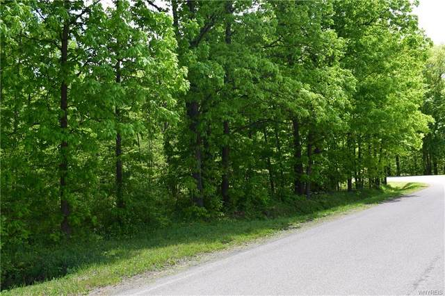 3566 Route 39, Collins, NY 14034 (MLS #B1357339) :: BridgeView Real Estate