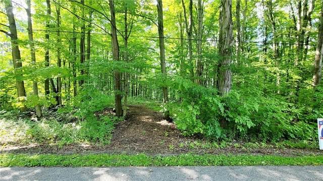 VL Noontide Road, Caneadea, NY 14717 (MLS #B1361411) :: BridgeView Real Estate