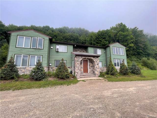 5392 Route 219, Great Valley, NY 14741 (MLS #B1361590) :: BridgeView Real Estate