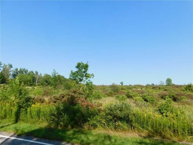 9226 Partridge Road, Colden, NY 14033 (MLS #B1364119) :: BridgeView Real Estate