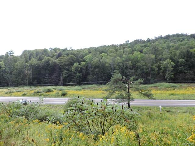Land at 6806 Nys Route 219 N, Ellicottville, NY 14731 (MLS #B1364571) :: Robert PiazzaPalotto Sold Team