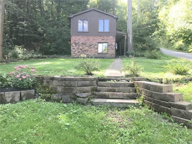 6610 (Cabin) Rice Road, Boston, NY 14025 (MLS #B1366022) :: Serota Real Estate LLC