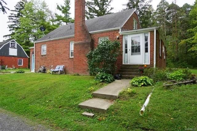 6729 Black Road, Evans, NY 14047 (MLS #B1366860) :: BridgeView Real Estate