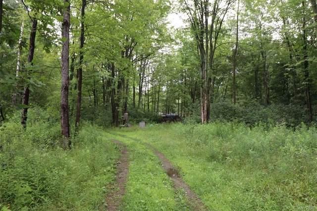 VL Crittenden Road, Alden, NY 14004 (MLS #B1367687) :: BridgeView Real Estate
