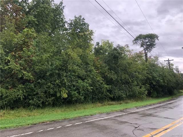 VL E Oakfield Road, Grand Island, NY 14072 (MLS #B1368172) :: Serota Real Estate LLC