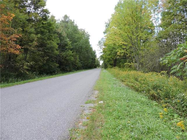 Vacant Land Beech Tree Road, Ashford, NY 14171 (MLS #B1369124) :: Robert PiazzaPalotto Sold Team