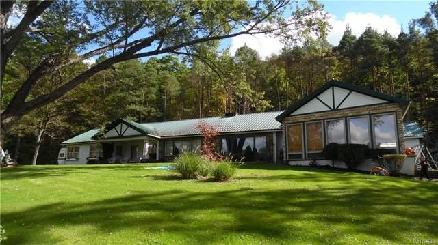 709 Lakeview, Portville, NY 14760 (MLS #B1369803) :: Serota Real Estate LLC