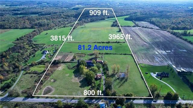 13695 North Road, Alden, NY 14004 (MLS #B1371644) :: TLC Real Estate LLC