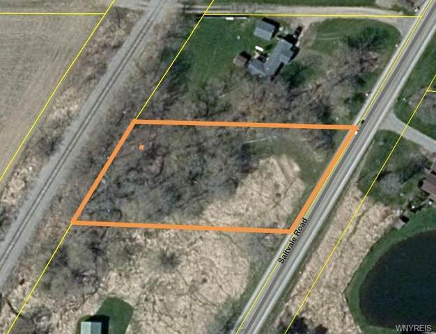 0 Saltvale Road, Middlebury, NY 14591 (MLS #B1371745) :: Serota Real Estate LLC