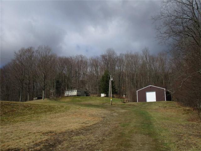 140 O'donnell Road, Willing, NY 14895 (MLS #R1032589) :: The CJ Lore Team | RE/MAX Hometown Choice
