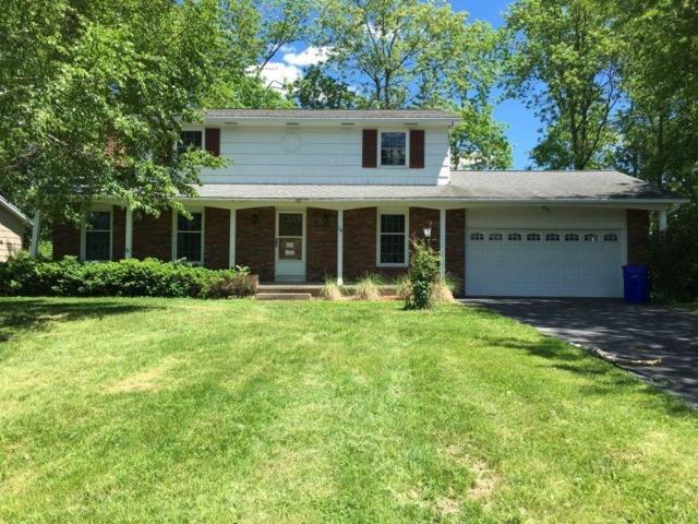 28 Stallion Circle, Greece, NY 14626 (MLS #R1051887) :: Robert PiazzaPalotto Sold Team