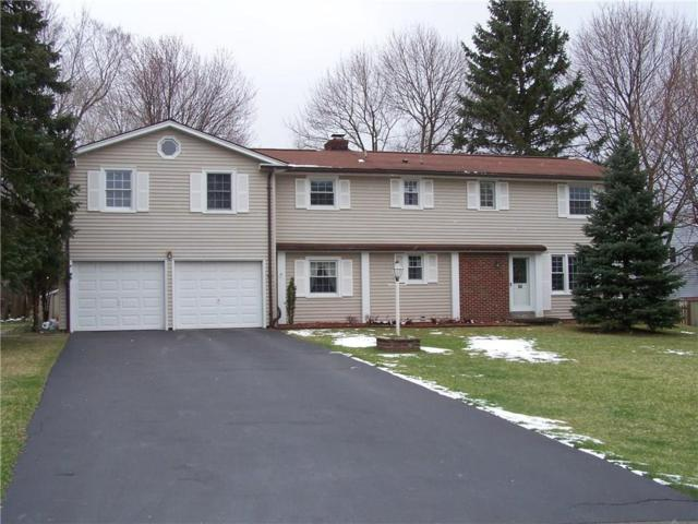 64 Parkridge Drive, Pittsford, NY 14534 (MLS #R1056360) :: Robert PiazzaPalotto Sold Team