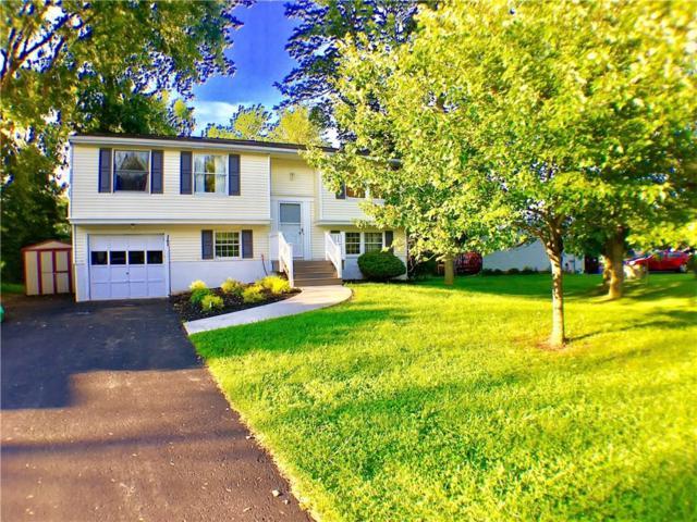 114 Thistlewood Lane, Ogden, NY 14559 (MLS #R1066773) :: Robert PiazzaPalotto Sold Team