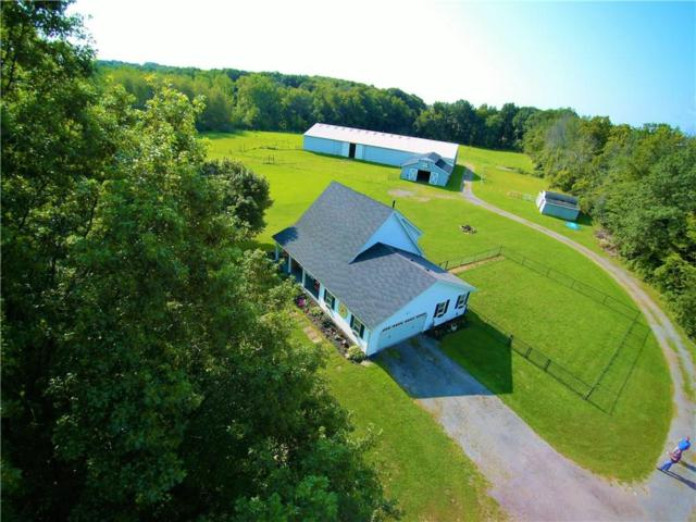 6171 Chili Riga Center Road, Riga, NY 14428 (MLS #R1071088) :: Robert PiazzaPalotto Sold Team