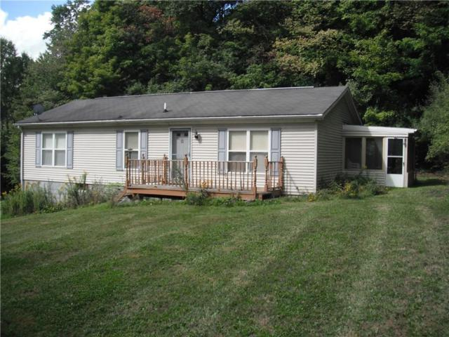 3397 County Route 121, Cohocton, NY 14826 (MLS #R1074581) :: The Chip Hodgkins Team