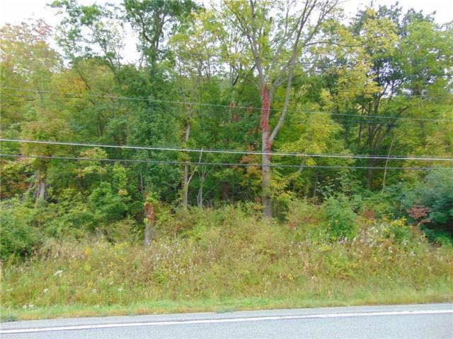 0 State Route 64, Bristol, NY 14424 (MLS #R1075383) :: The Chip Hodgkins Team