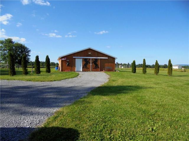 4117 County Road 18, Gorham, NY 14424 (MLS #R1078178) :: The Chip Hodgkins Team