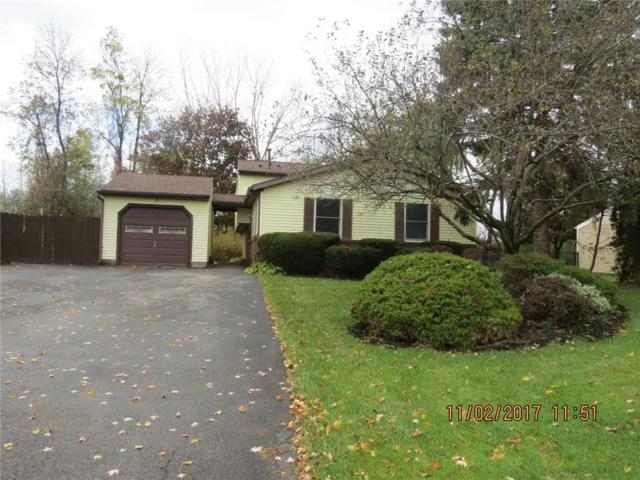 37 Wayfaring Lane, Greece, NY 14612 (MLS #R1085435) :: Robert PiazzaPalotto Sold Team