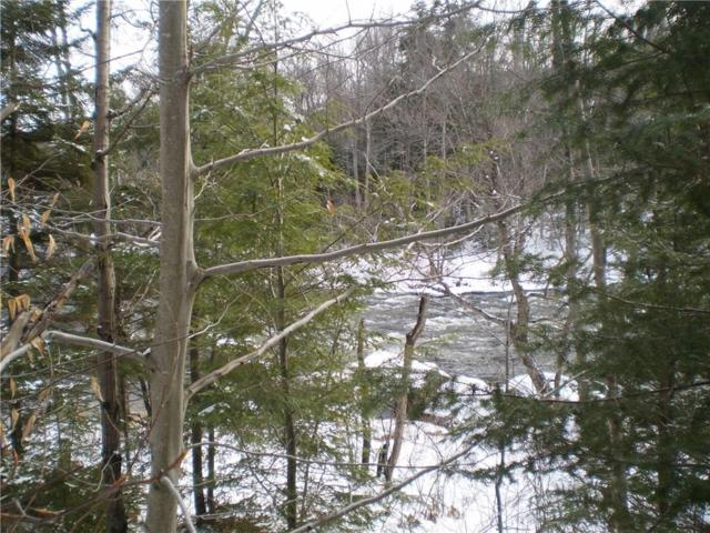 168 Scusa Rd Old Forge, Webb, NY 13420 (MLS #R1088393) :: The Rich McCarron Team