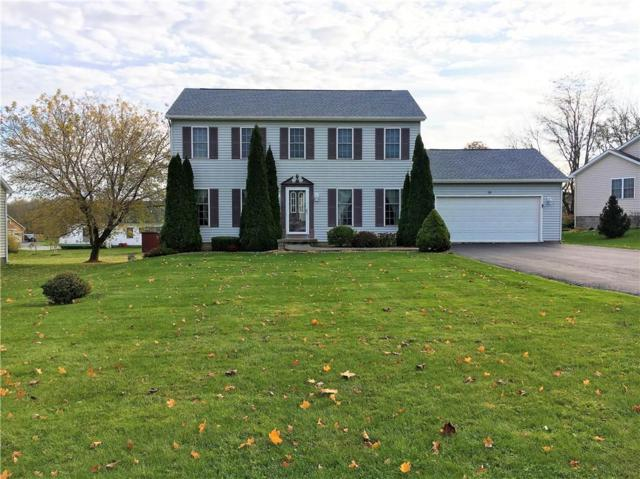 18 Berry Grove Lane, Clarkson, NY 14420 (MLS #R1088680) :: Robert PiazzaPalotto Sold Team