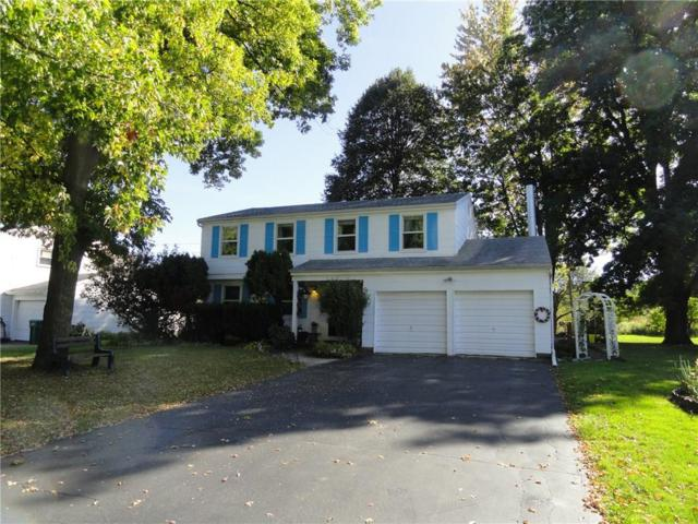 117 Blackwell Lane, Henrietta, NY 14467 (MLS #R1090000) :: Robert PiazzaPalotto Sold Team