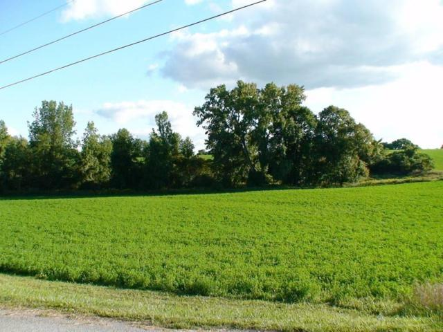 Lot 11 Neale Road, Caledonia, NY 14423 (MLS #R1091892) :: The Chip Hodgkins Team