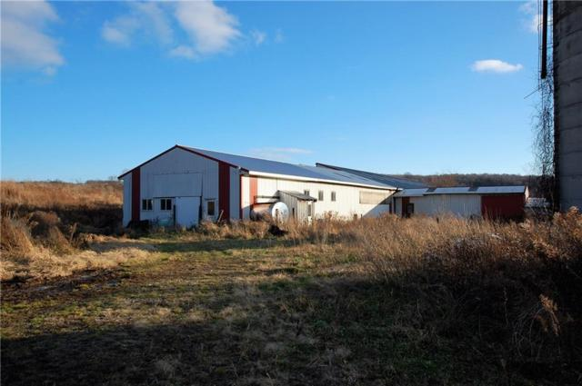 2429 Edson Road, Gerry, NY 14782 (MLS #R1092085) :: MyTown Realty