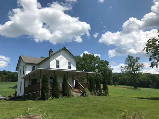 4200 Decamp Road Road, Tyrone, NY 14837 (MLS #R1095652) :: The Chip Hodgkins Team
