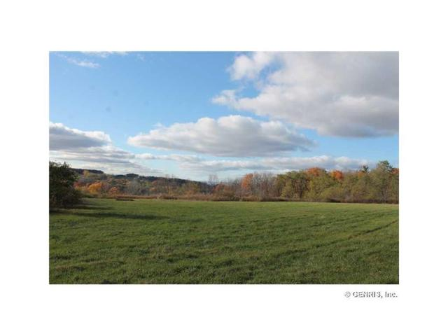 0 Sheppard Road, Sparta, NY 14437 (MLS #R1096288) :: The CJ Lore Team | RE/MAX Hometown Choice