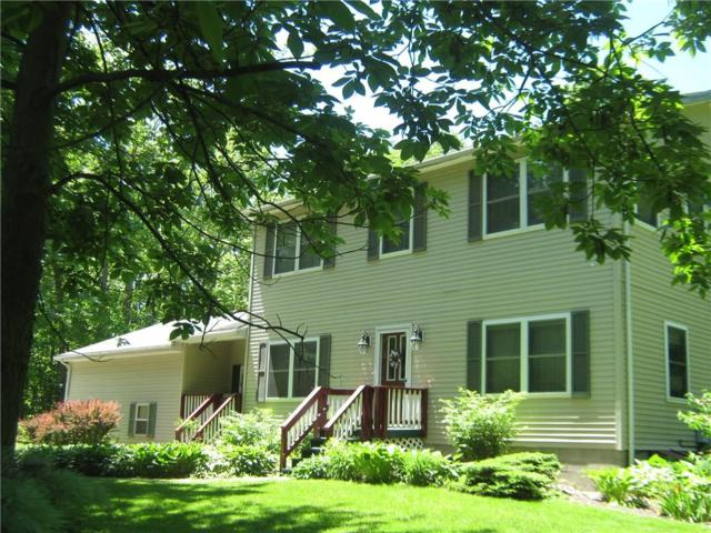 4138 Lakeville Groveland Road, Geneseo, NY 14454 (MLS #R1096903) :: The Rich McCarron Team