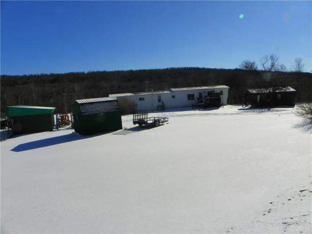 7512 County Route 74, Prattsburgh, NY 14873 (MLS #R1097510) :: The Chip Hodgkins Team