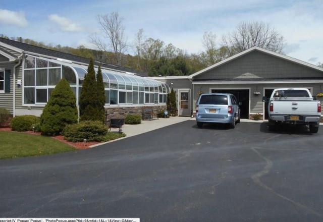8802 County Route 105, Avoca, NY 14809 (MLS #R1098082) :: BridgeView Real Estate Services
