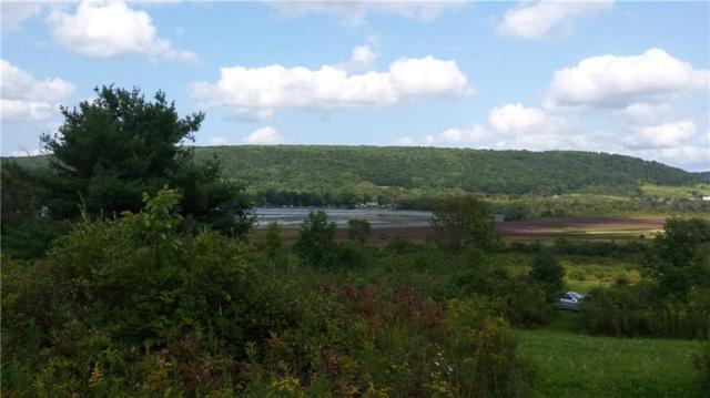 0 County Road 24, Tyrone, NY 14887 (MLS #R1098303) :: The Chip Hodgkins Team
