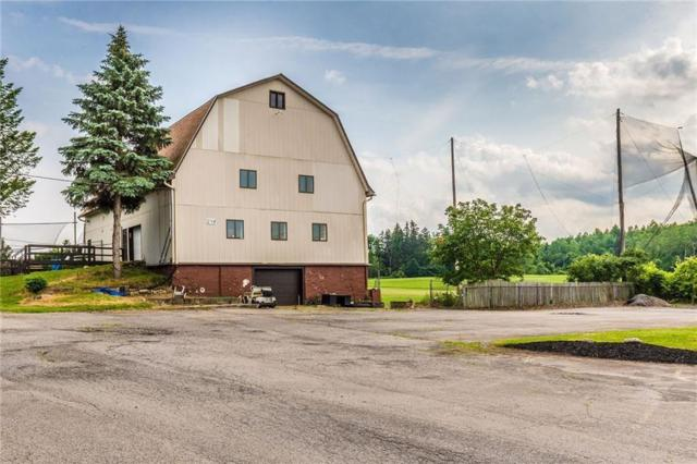 248 State Route 31, Macedon, NY 14502 (MLS #R1098305) :: The Rich McCarron Team